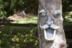 Old man tree face Stock Photo