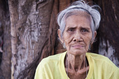 Old man and the tree - Philippines royalty free stock photos