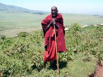 The old man of the tribe Masai royalty free stock photography