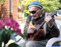 Old Man with Ukulele Royalty Free Stock Images