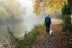 Old Man. Walking with dog Royalty Free Stock Photos