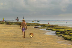 Old Man Walking with his Dog at Beach Stock Image