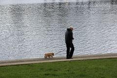 Elderly man Walking with his Dog by the Sea Royalty Free Stock Image