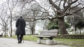 Old man walking in the park royalty free stock photos