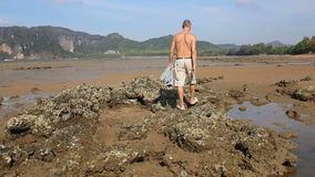 Old man walks along stones at low tide stock footage