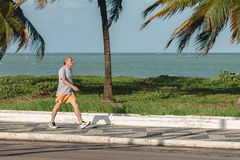 Old man walks near the beach Royalty Free Stock Photo