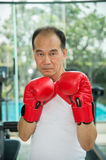 Old man wearing red boxing gloves exercising in fitness or gym. Look to camera ready to fighting Stock Images