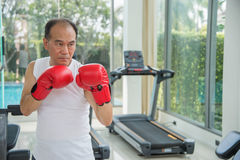 Old man wearing red boxing gloves exercising in fitness or gym. Look to camera ready to fighting, copy space for text Stock Photos