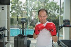 Old man wearing red boxing gloves exercising in fitness. Look to camera, look to camera ready to fighting, copy space for text Stock Photography