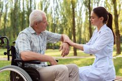 The old man on a wheelchair in the park. The doctor probes the old man`s elbow. The doctor probes the old man`s elbow on a wheelchair, sitting on a bench in the Royalty Free Stock Image