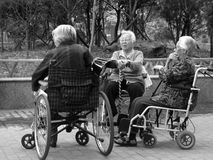 Image result for three old men in wheelchairs