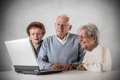 Old man women using a laptop royalty free stock photo