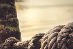Old marine rope on blurred background of the sunset sky on shore of a tropical sea with palm tree Stock Photo