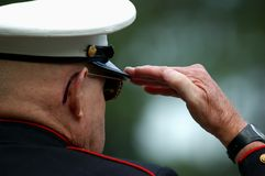 An Old Marine Salutes. Over-the-shoulder image of an old Marine Veteran saluting Royalty Free Stock Photography