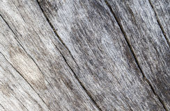 Old marine wood texture with curves photo. Weathered timber board with crack lines. Royalty Free Stock Image