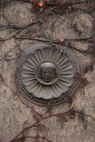 Old mascaron overgrown with climbing plants in Berlin, Germany. Royalty Free Stock Photography