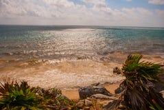 Old Maya Beach in Tulum, Mexico, Yucatan, Riviera Maya. Beautiful Tropical landscape and Caribbean sea on a Sunny day.  royalty free stock photography