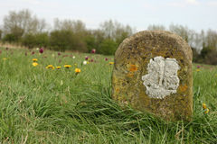 Old meadow boundary marker Royalty Free Stock Images