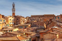 Siena. View of the old city district. Royalty Free Stock Photo