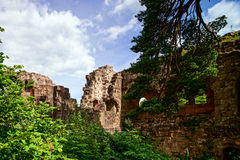 Old medieval fortress ruins of Chateau Landsberg in deep forest Stock Image