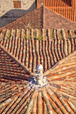 Old mediterranean style rooftops of Split Royalty Free Stock Photography