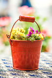 Old metal bucket with flowers. Old red metal bucket decorated with yellow flowers on the table royalty free stock photos