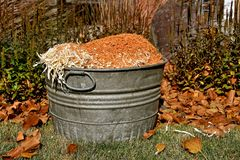 Old metal bushel basket. An old metal bushel basket is loaded with sawdust from cutting lumber stock image