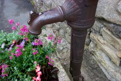Old metal faucet with flowers in planter. In the centre of an old English town, a rusted faucet has found a decorative use next to a planter filled with flowers Royalty Free Stock Images