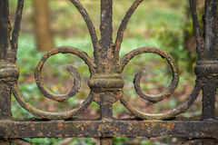 Old metal fence. With green background Royalty Free Stock Images