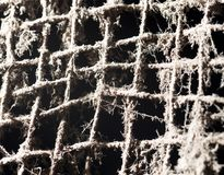 Old metal grill in the web. Photo of an abstract texture Royalty Free Stock Photography