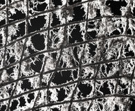 Old metal grill in the web Stock Images