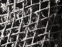 Old metal grill in the web. Photo taken by professional camera and lens Stock Photo