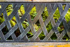 The old metal handmade back texture of the bench with ferns view Royalty Free Stock Photos