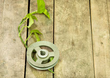 Old metal pulley Stock Image