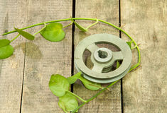 Old metal pulley Stock Photography
