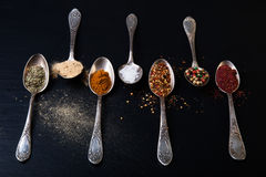 Old metal spoons with different kind of spices on a black backgr Stock Photos