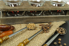 3 old metal spoons with spices on burlap background Stock Images