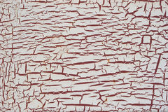 Old metal texture. Background of old rusty metal with cracks are in a paint. Grunge texture Stock Image