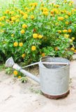 Old metal watering can Royalty Free Stock Photography