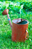 Old metal watering can garden on the bright green grass. Royalty Free Stock Photo