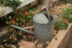 Old metal watering can Royalty Free Stock Photo