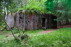 Old military bunker in deep forest Royalty Free Stock Photo
