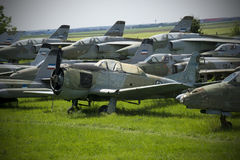 Old military fighter jets. In the field Royalty Free Stock Images
