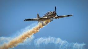 Old military plane at Bucharest Aeronautic show Royalty Free Stock Photo