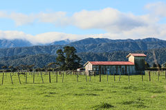 Old Milking Shed. Great New Zealand Countryside, showing the farmland in the foreground and wonder  hilly native bush And Mountain in the background Royalty Free Stock Photography