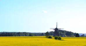 Old mill in oilseed rape field Royalty Free Stock Photos