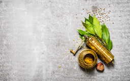 Old mill with spices and bay leaves. On stone table. Stock Image