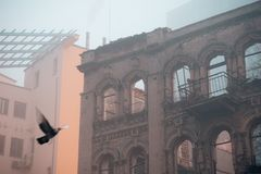 An old and modern building in the fog and a flying dove.  Stock Photos