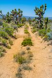 Old Mojave Road royalty free stock images