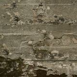 Old moldy concrete wall Royalty Free Stock Photos